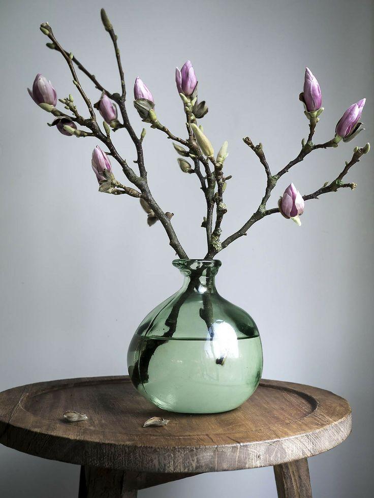 Bloemen_en_planten_in_huis_7.jpg